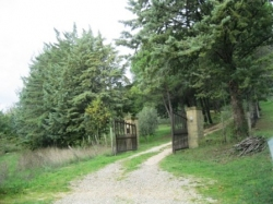 VENDESI Casale - Montebuono Sorano - Campagna